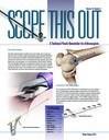 Scope This Out (Winter/Spring 2015 - Vol. 16 Number 2)